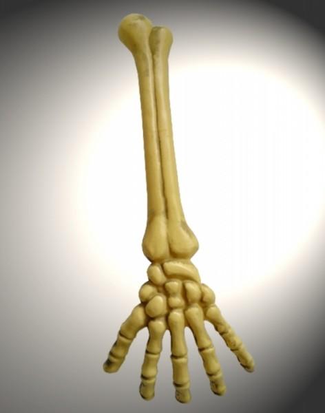 Skelettarm Handkochen