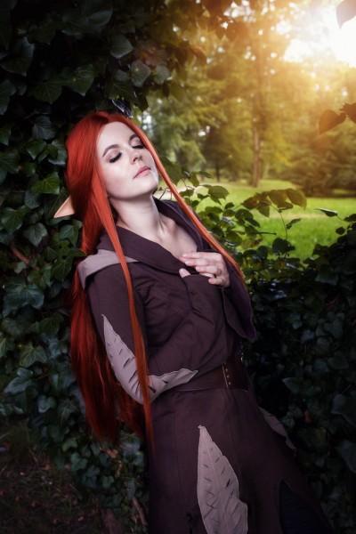 Elfenkleid Fantasy braun