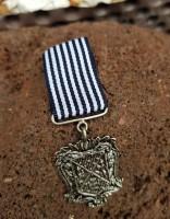 Badge Abzeichen mit Orden