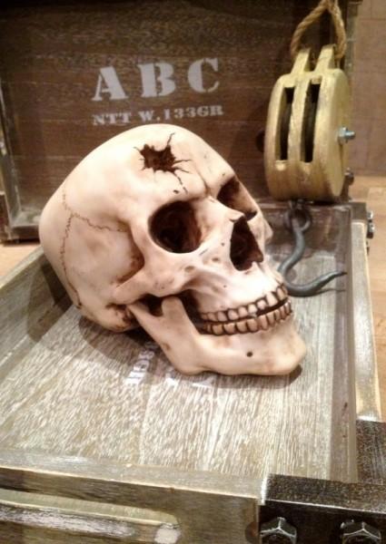 Totenschädel mit Einschußloch